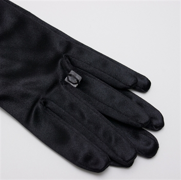 Picture of Black Evening Gloves GL2009